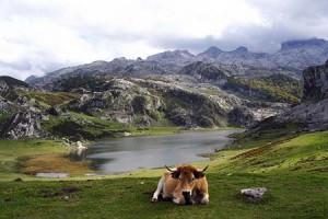 Picos-de-europa-Lagos-de-Covadonga
