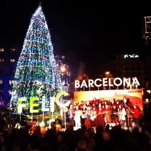 barcelona_christmas-tree