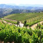 Priorat_wine_Region
