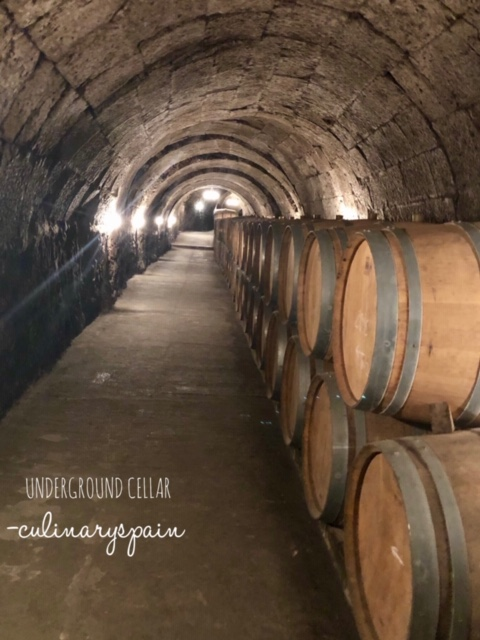 underground cellar Ribera del duero