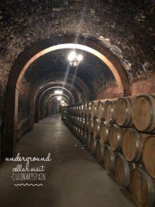 subterranean cellar at Ribera del duero on wine day tour